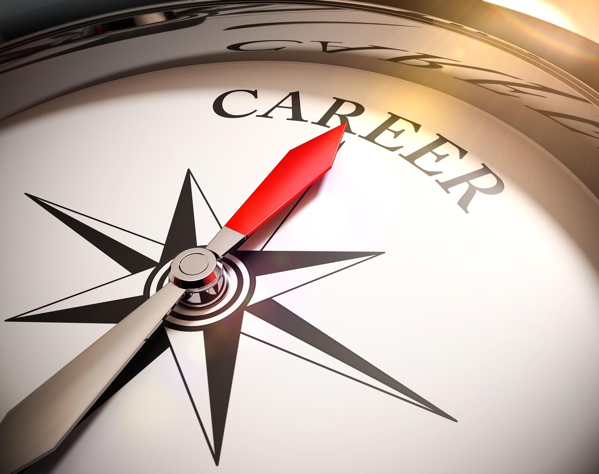 Kompassi, jonka neula osoittaa Career (ura)